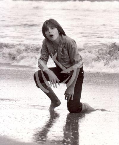 Luis Miguel, 1982