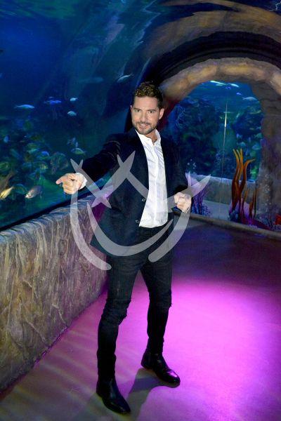 David Bisbal contigo es el Hijo del... acuario