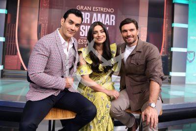 David Zepeda, Ana Brenda Contreras y Julián Gil sin Ley