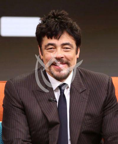 Benicio del Toro madruga por Sicario