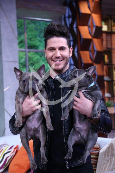 El chef James y sus perros